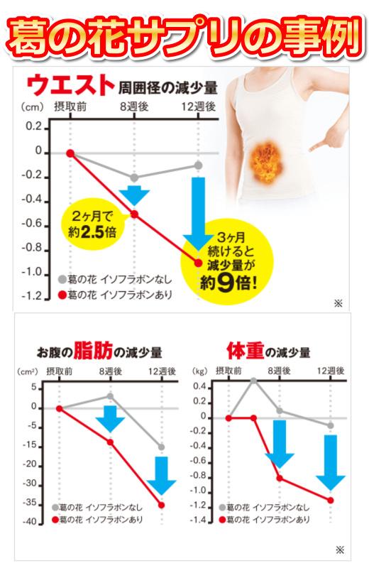 葛の花,サプリメント,体重減,ダイレクトテレショップ,事例グラフ