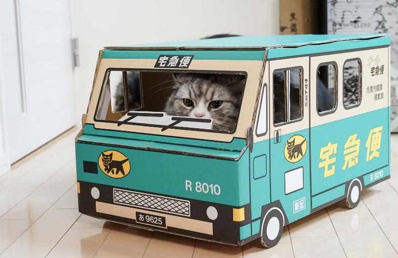 ヤマト運輸の車と猫